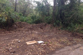 Sitio en Guanacaste donde encontraron dos de los tres cadáveres.